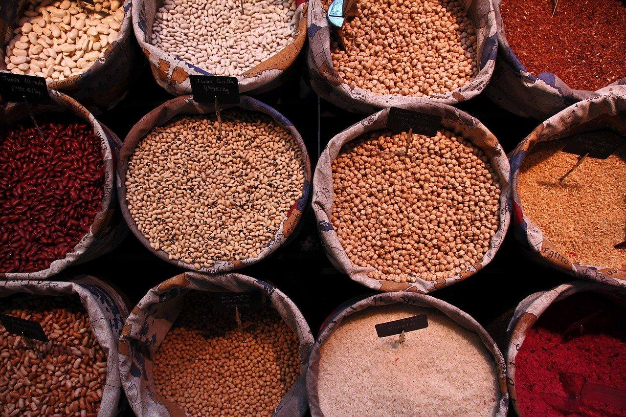 Legumbres como fuente alternativa de proteínas